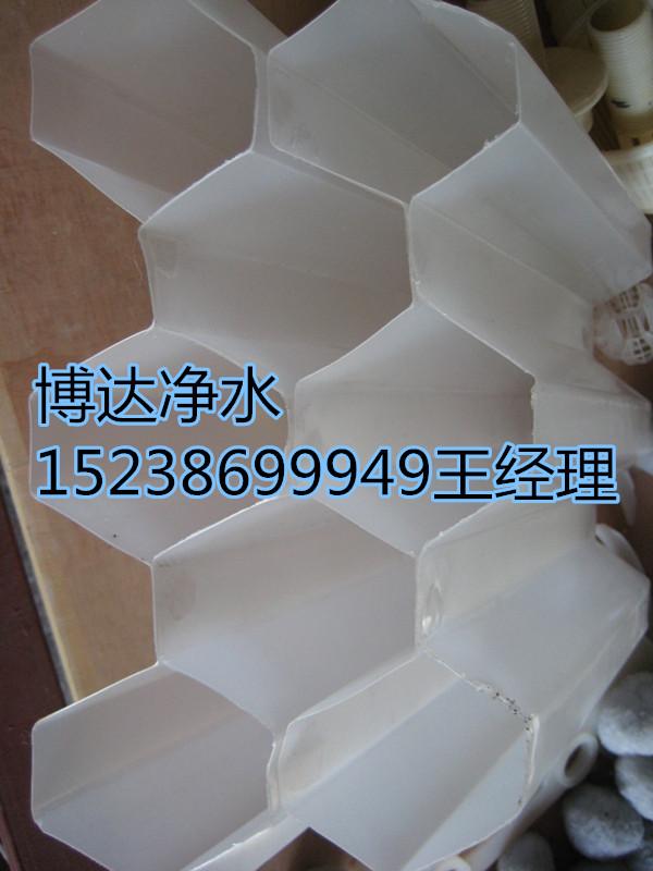 _919802443_副本.jpg