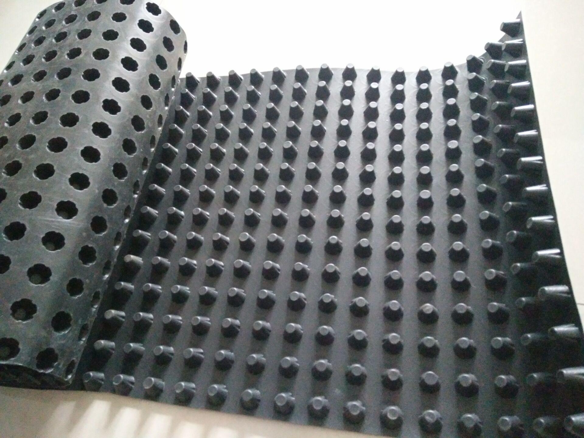 20排水板.jpg