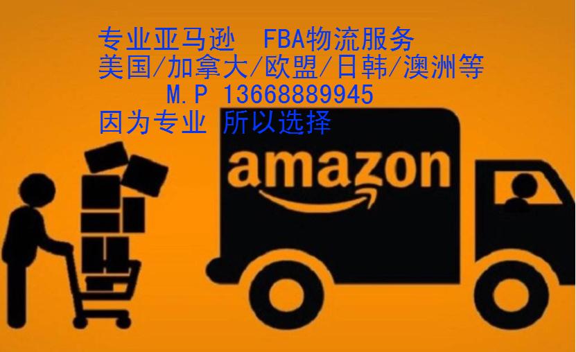 亚马逊1中文.png