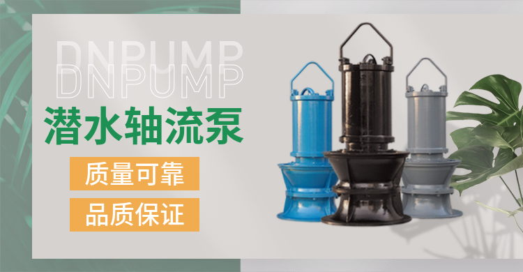 轴流泵1.png