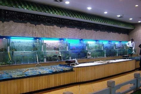 深圳海鲜池专业定制